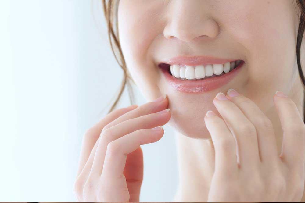 Componentes de un diente